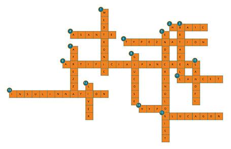 crossword_key_455px